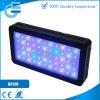 D2120 Colorful und Dimmable D120W Cheap LED Aquarium Light