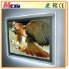 Placa de exposição transparente interna feita sob encomenda do diodo emissor de luz do melhor preço