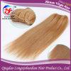 Выдвижение человеческих волос волос Remy девственницы фабрики European100% (HSTB-A132)