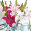 結婚式またはホームまたは庭の装飾(SY-302)のための一義的な単一ユリの花