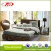Base di sofà elegante del rattan (DH-8680)
