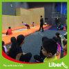Trampoline interno comercial das crianças aprovadas do Ce para o parque de diversões