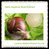 Uittreksel het van uitstekende kwaliteit van de Slak van Aspersa van de Schroef