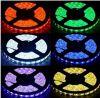 Buoni indicatori luminosi di nastro flessibili termoresistenti del nastro DC9V Wateproof IP65 di sogno Lpd8806 LED di prezzi piacevoli
