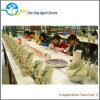 Inspección de cerámica de la calidad del producto, agente de la intervención de la fábrica