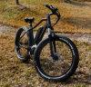 2016 가장 새로운과 형식 중앙 드라이브 뚱뚱한 타이어 최고 전기 산악 자전거