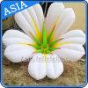 fleurs gonflables de 2m DEL s'allumant pour la décoration d'étape