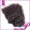 Реальные человеческие волосы для сбывания Кита, оптового малайзийского выдвижения волос
