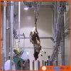 Linha equipamento da chacina do gado de Slaughte do búfalo da máquina