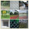 Загородка звена цепи Galvanized/PVC покрытая (фабрика)