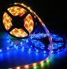 Luz de tira flexible del LED (CIS-STP5050-60LED)