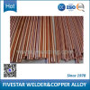 Auto Parts (Newly Special 급료)의 Welding Machine를 위한 베릴륨 Copper Bar