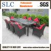 Rattan della mobilia del giardino di buona qualità (SC-B8849-BB)