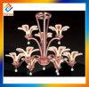 Illuminazione del lampadario a bracci del metallo del LED per la decorazione domestica del soffitto
