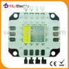 20W Red Green Blue White LED Chip High Power LED