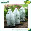 Couverture croissante chaude de tomate de couverture d'usine de jardin de qualité d'Onlylife