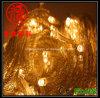 Blanco caliente de la luz de la secuencia de la Navidad del LED (LS-5-50-M1)