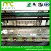 Sacs biodégradables en plastique