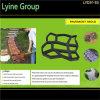 O preto do fabricante do trajeto do tijolo das lajes de cimento de DIY plástico Cobblestone-Olha moldes do pavimento do jardim com baixo preço