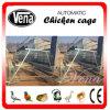 Poultry automatique Cage pour Chicken Use