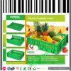 Gabbie di plastica pieghevoli per la verdura e la frutta