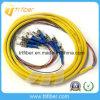 Fan sur mode St Simple 12 Noyau fibre optique en tire-bouchon