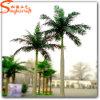 Fabricante Profesional Planta de Palma de Árbol Artificial para la Decoración