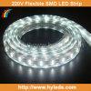220V High Voltage SMD 5050 LED Strip/LED Ribbon (HY-HV5050-48-W)
