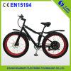 Fett-Gummireifen-Schnee-elektrisches Fahrrad-Fahrrad des Chinese-4.0