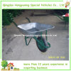 Preiswerter galvanisierter Metaltellersegment-Rad-Eber (WB6203)
