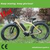 250W 36V refrescan la bicicleta eléctrica con el MEDIADOS DE mecanismo impulsor para los adultos