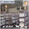 Salle d'entreposage/pièce modulaire d'entreposage au froid/salle d'entreposage congélateur de viande