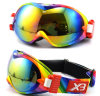 Großhandelsqualitäts-und niedriger Preis-Ski-Schutzbrillen