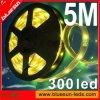 New SMD3528, SMD5050 LED Strip Light (BS-S10-002)