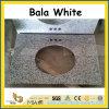 Chinese Bala White Granite Vanity Tops for Kitchen / Bathroom