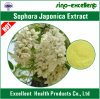 Rutina dell'estratto di Japonica del Sophora (Rutoside) 95% 98%