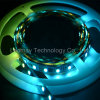 Magia RGB 5050SMD LED Strip Light con Ce/RoHS 1903