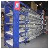 Het automatische Systeem van de Landbouw van het Gevogelte voor de Batterijkooi van de Kip