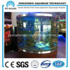 Tanque de peixes acrílico/aquários transparentes plexiglás da decoração