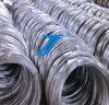 Aço galvanizado baixo carbono da alta qualidade de Rod de fio Q235 9.5mm