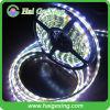 고성능 5050 SMD LED 표시등 막대