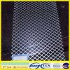Galvanisé élargi Mesh ISO9001 (XA-EM004)
