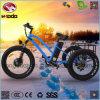 48V 500W 판매를 위한 뚱뚱한 타이어 화물 전기 세발자전거