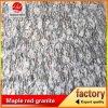 Granito di G4418 Hailang Hua, granito di Hailanghua, granito del fiore di Hailang