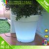 Het Water geven van de Potten van de Planter van de Vaas van de cilinder de Openlucht Concrete ZelfPot van de Bloem