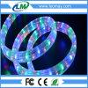 Dos años de la garantía 4 del alambre LED de luz flexible plana de la cuerda