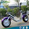 2017 moto électrique du plus défunt d'Ecorider deux de roue pneu électrique de vélo grand