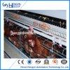 자동적인 H 유형 닭 감금소 통제 헛간 장비