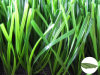 Synthetic/Artificial Grass Yarn com Tt