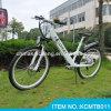 2014 neues Model Electric Mountain Bike für Sale